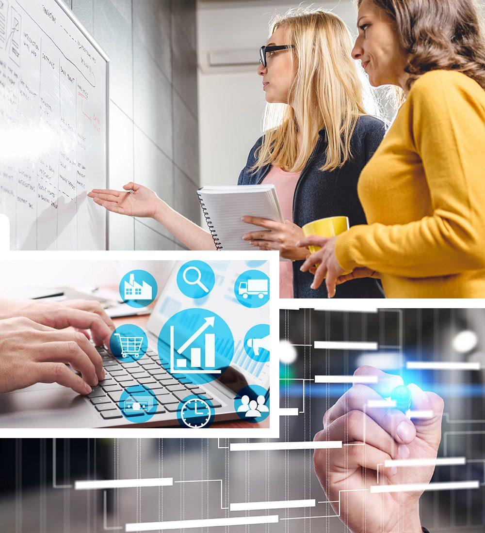 enterprise-software-consultants